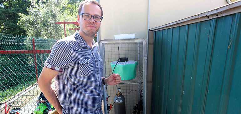 La lutte écologique contre le moustique tigre se développe
